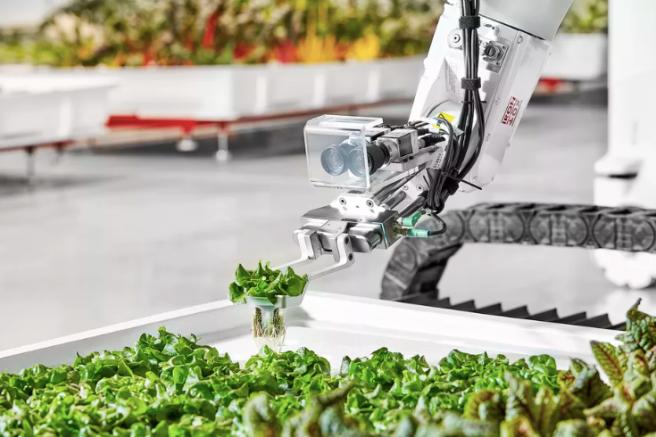 RoboNews Roboti Fermieri Robofun